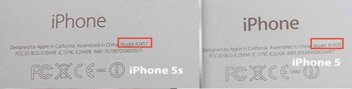 iPhone 5 и 5S