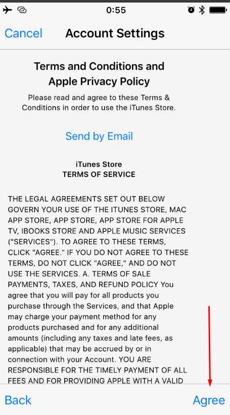 Положения и условия iTunes Store